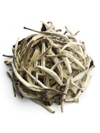 Tè Bianco Yin Zhen premium